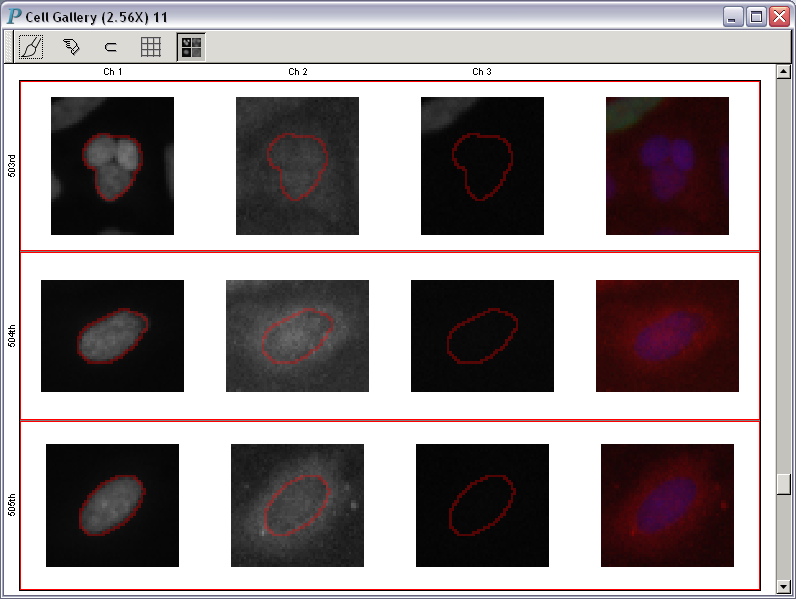 A cell gallery for HCS data analysis and visualization